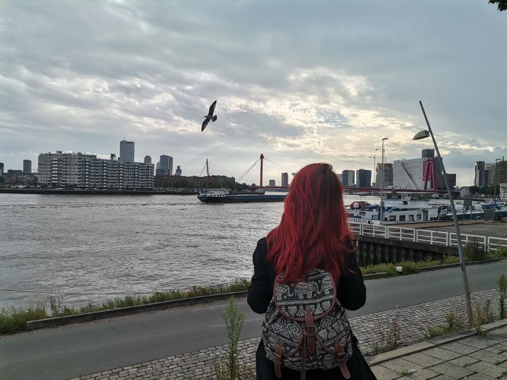 Studij u Nizozemskoj
