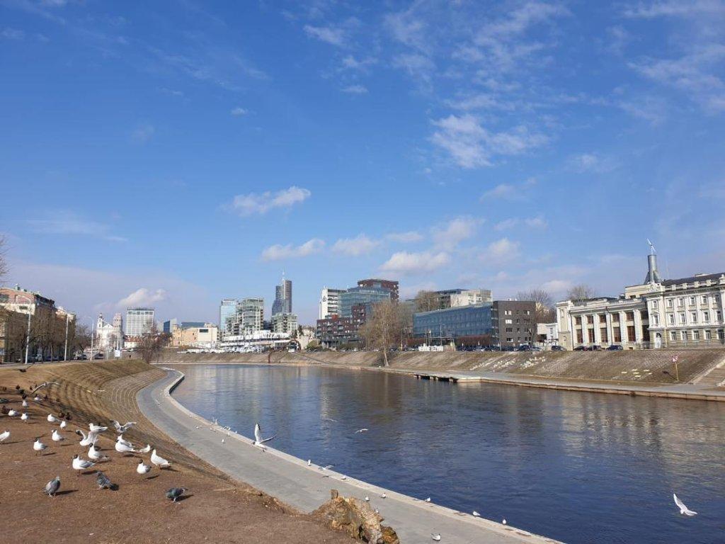 Studij u Litvi